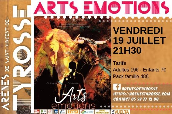 10X15 art emocion ok